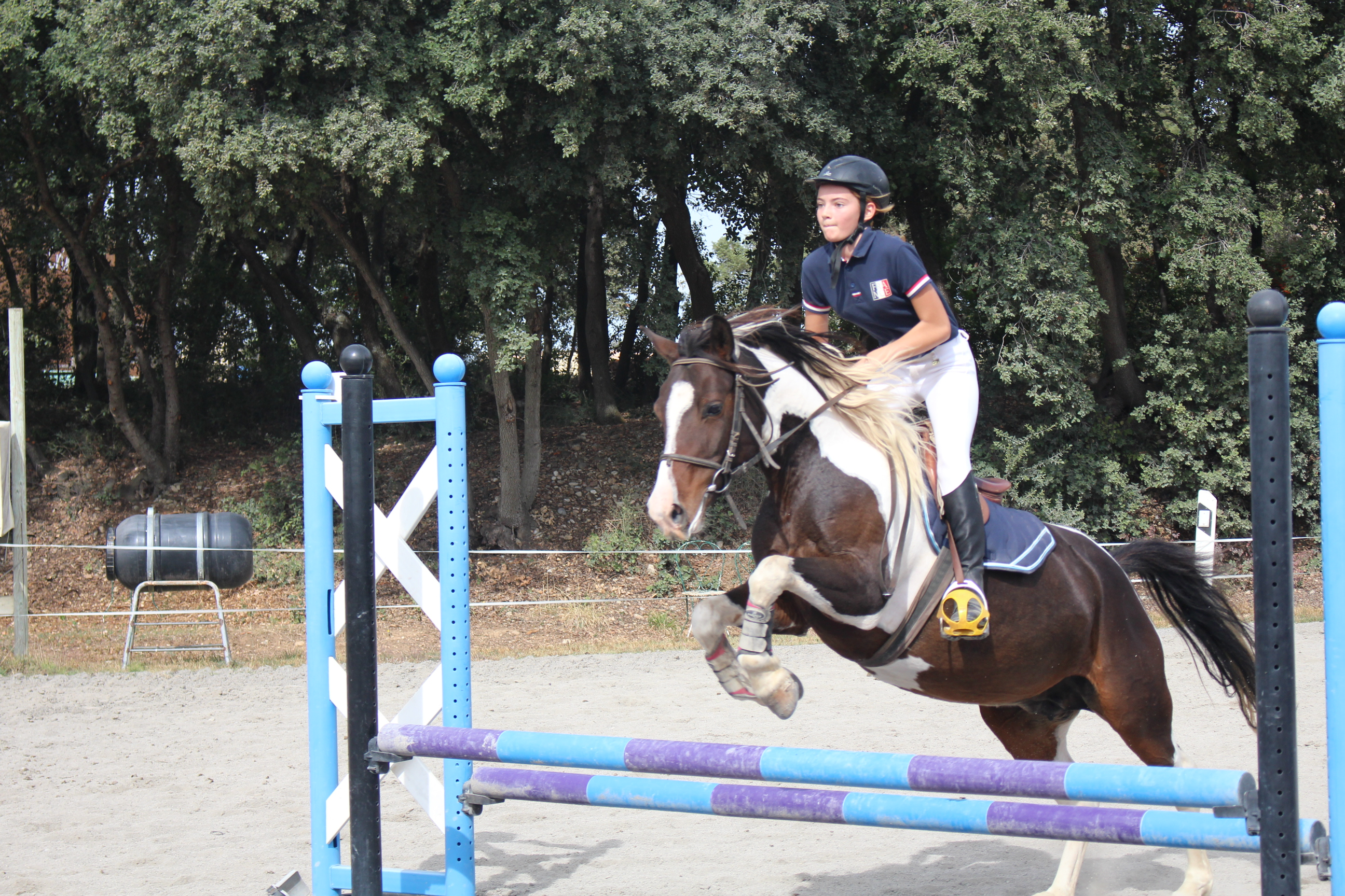 challenge-saut